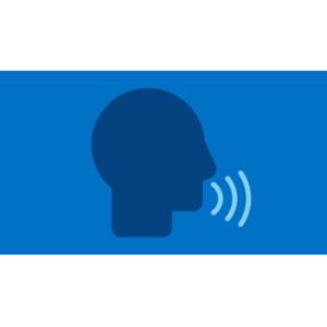 Intel® High Definition Audio (Intel® HD Audio)