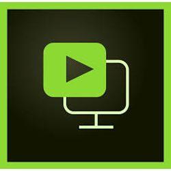 Adobe Presenter Video Express v12 1licentie(s) Engels
