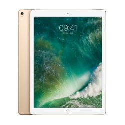 Apple iPad Pro 256GB 3G 4G Goud tablet
