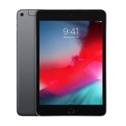 iPad Mini Wf Cl 64 Grey