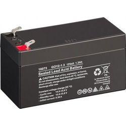 MicroBattery 15.6Wh Lead Acid Battery 12V 1.3Ah GO12-1,3