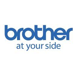 Brother DUAL HINGED METAL DOOR 2104X257X40MM-