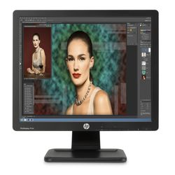 HP ProDisplay P17A computer monitor 43,2 cm (17
