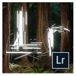 Adobe Photoshop Lightroom 6, Doos, Volledig, Windows/Mac, Windows 7 Enterprise, Windows 7 Enterprise x64, Windows 7 Home Basic,