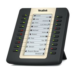 Yealink EXP20 IP telefoon Zwart LCD
